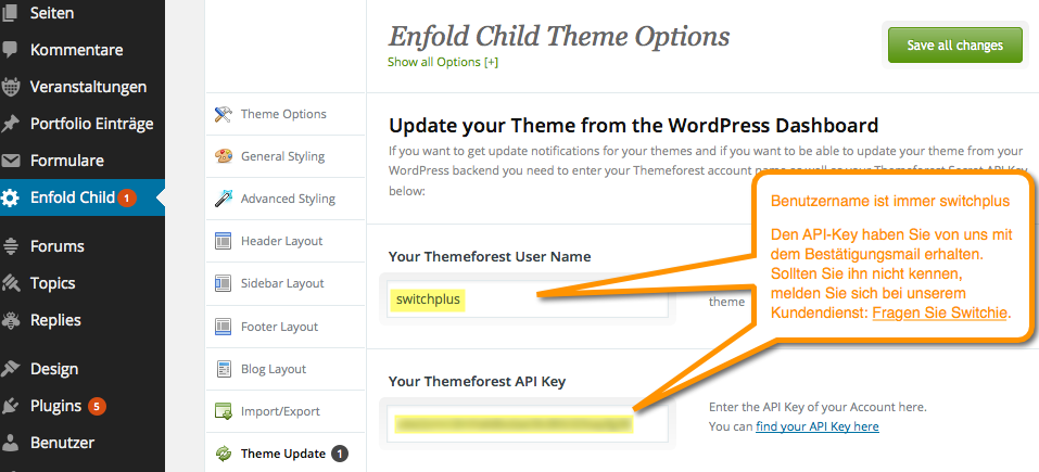 API Key eintragen