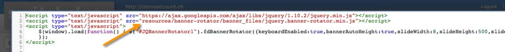 JavaScript Code in YOLA